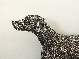 Detailed German Shorthaired Pointer