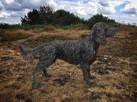 A slightly larger than life sized working Cocker Spaniel