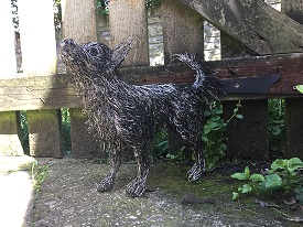 Life sized Chihuahua in stainless steel wire