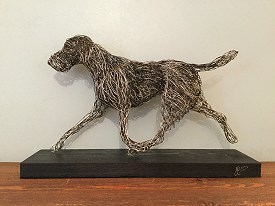 Detailed German Wirehaired Pointer
